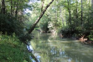 TN Mountain Land With A Creek And A Small Pond | PRC-TR36