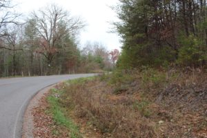 Owner Financed Wooded Land In Tennessee