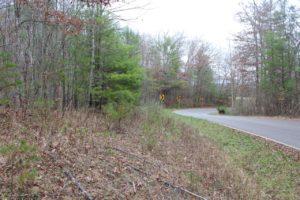 Wooded Hillside Land For Sale