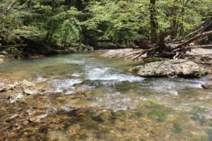 Land With Beautiful Creek Frontage