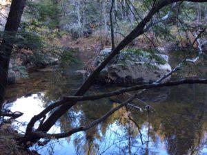 Creek Front Owner Financed Land In TN